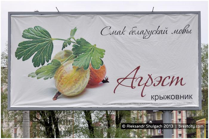 На улицах Бреста установлены билборды с «роднай мовай»