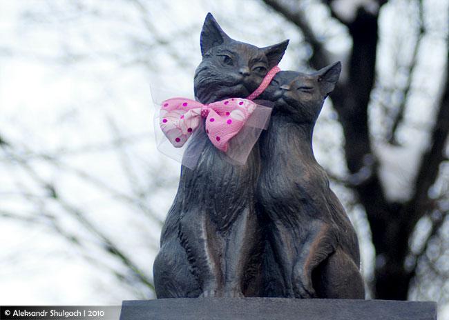 Влюбленные мартовские коты в Бресте