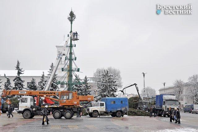 Разбор елки в Бресте на площади Ленина