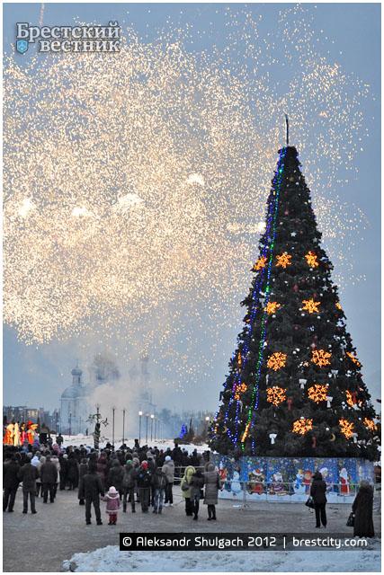 Открытие елки на востоке в Бресте