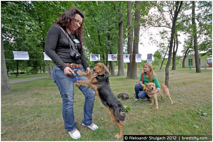 Защита прав животных