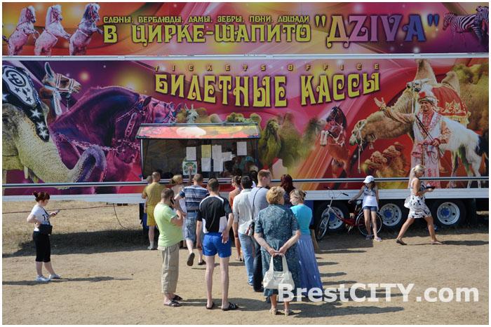 Цирк в Бресте на проспекте Республики