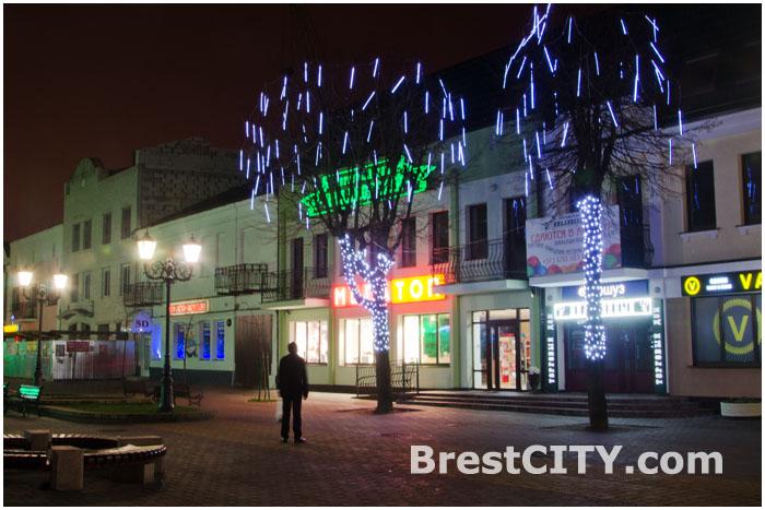 Плачущие деревья на улице Советской в Бресте