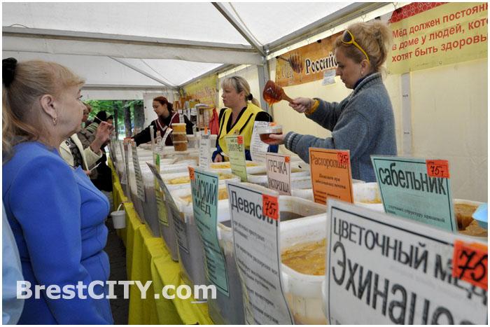Выставка меда в Бресте на улице Гоголя