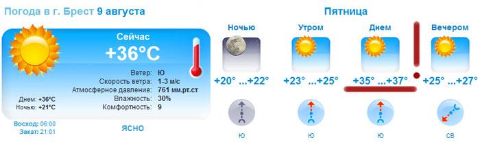 Погода  Бресте. Как спастись от жары