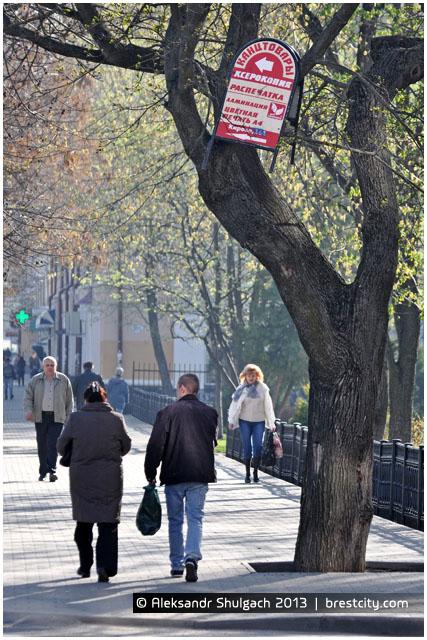 Рекламный щит на дереве в Бресте