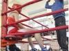boxing_brest_05