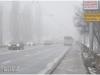fog_brest_01