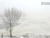 fog_brest_11