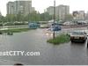 rain_brest04