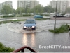 rain_brest05